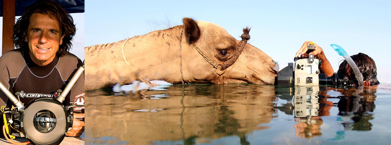 prova 3 1350x500 marcel maldivas i camell