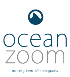 OceanZoom - UW Photography