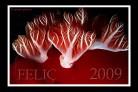 MIX_FELIZ 2009
